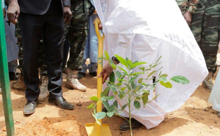 59ème anniversaire de l'indépendance du Niger : le Président de la République, Chef de l'État, S.E.M. Issoufou Mahamadou a donné  à Tahoua le coup d'envoi de la plantation d'arbres.